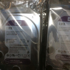 Hard Disk HDD 2TB Western Digital Purple WD20PURX SATA 6.0Gb/s - NOU, 2 TB, 5400, SATA 3