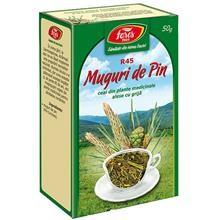 Ceai Muguri de Pin 50gr Fares Cod: 5941141000960 foto