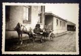 P.122 FOTOGRAFIE RAZBOI WWII OFITERI GERMANI WEHRMACHT TRASURA 9/6,2cm