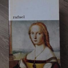 RAFAEL - REMO BRANCA