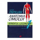 Anatomia omului. Aparatul locomotor - Victor Papilian, Ion Albu (Vol. 1 )