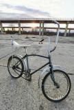 Bicicleta Gazzele Piet Pelle (Gen Pegas Kent, cu sa lunga si coarne), 10, 1