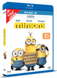 Minionii / Minions - BLU-RAY Mania Film