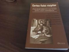 CARTEA FIULUI RISIPITOR- J. JEREMIAS, N. STEINHARDT C. NOICA J-L MARION SI ALTII foto