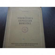 TUBERCULOZA ANIMALELOR DOMESTICE - I.BAIES