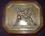 Cupa Nicolina Lupte 1968 - Placa bronz cu lemn