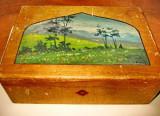 3986-Caseta din lemn pictata veche anii 1900.