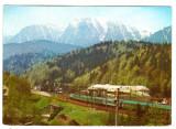 Locomotiva tren de persoane PREDEAL FOTO HEDY LOFFLER, Necirculata, Printata