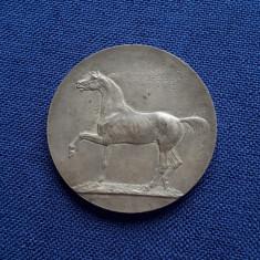 Medalie per. regalista Agricultura - Zootehnie - 1924 - Calarie