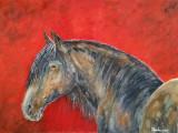 Acuarela studiu cal - tablou tablouri pictura picturi grafica desen