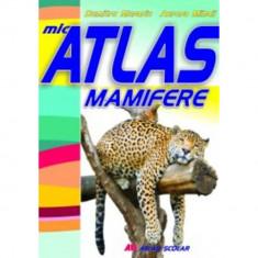 Mic atlas - Mamifere - Aurora Mihail, Dumitru Murariu
