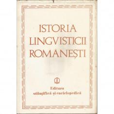 Istoria Lingvisticii romanesti - Iorgu Iordan (coord.)