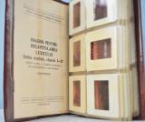 46 diapozitive pentru recapitularea lexicului insusit la lectiile de lb romana