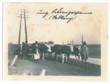 4523 - VULKAN, Hunedoara, ETHNICS - old postcard, real PHOTO 12/9 cm - unused