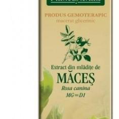 Extract din mlădiţe de MĂCEŞ 50ml Plant Extrakt