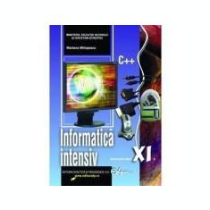 Manual informatica - clasa a XI-a (intensiv)
