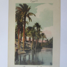 Carte postala necirculata Egipt-Peisaj de pe fluviul Nil circa 1900