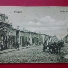 Pascani Strada Mare, Circulata, Printata