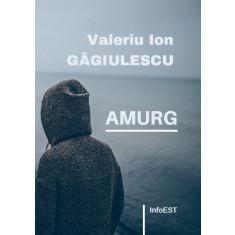 carte pdf   Amurg - Valeriu Ion Găgiulescu   Ebook
