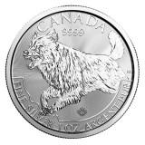 Cumpara ieftin Moneda argint lingou, Canadian Silver Wolf Predator 1 uncie = 31 grame