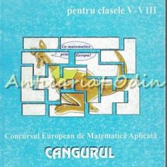 Matematica Distractiva Pentru Clasele V-VIII - Concursul Cangurul