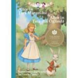 Alice în Tara Minunilor & Alice in Tara din Oglinda. Repovestire dupa scrierile lui Lewis Carroll - Eva Mason