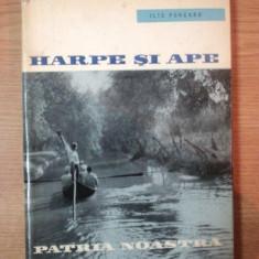 HARPE SI APE de ILIE PURCARU , 1962