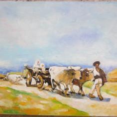 Tablou / Pictura car cu boi semnat Cimpoesu