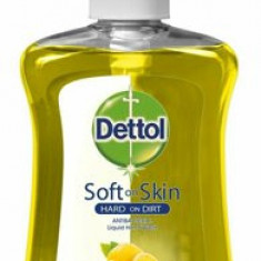 Sapun lichid antibacterian cu citrice Dettol Soft On Skin Hard On Dirt, 250 ml