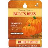 Balsam de buze Dovleac 4,25 gr, Burt's Bees