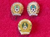Lot 3 insigne fotbal - FC OLT SCORNICESTI