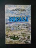 MATEI STANCIOIU - BREAZA (geografie, istorie turism)