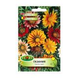Seminte flori Florian flori de gazania multicolor 0.3 g
