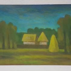 ARHITECT RADU MARIUS OCTAV - PEISAJ RURAL , PEISAJ NESEMNAT