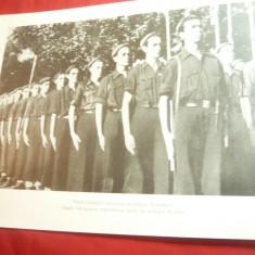 Fotografie tiparita ww2- Spania-Defilare a tineretului falangist ( fascist)