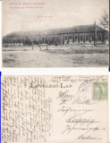Petrovaselo,Roman-Petre (Timis ), Banat-- Scoala-  rara
