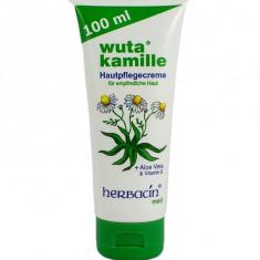 Crema Pentru Ingrijirea Pielii Herbacin 100 ml