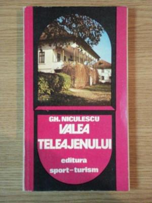 VALEA TELEAJENULUI DE GH. NICULESCU , 1981 foto