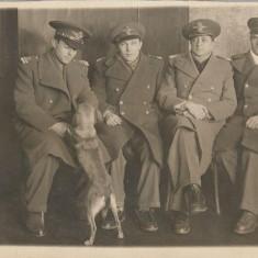 Fotografie ofiteri romani aviatie al doilea razboi mondial