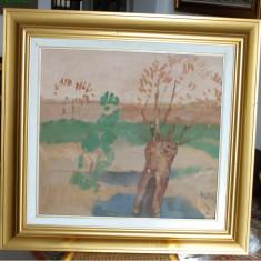 Tablou pictura Ion Popescu Negreni - Peisaj, Peisaje, Ulei, Impresionism