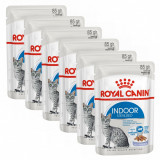 Cumpara ieftin Royal Canin Indoor Sterilised In Jelly Pliculeț 6 x 85 g