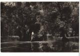 CPIB 16805 CARTE POSTALA - VEDERE DIN DELTA DUNARII, RPR, Necirculata, Fotografie