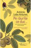 Pe raurile ce duc..., Antonio Lobo Antunes