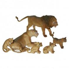Set animale salbatice Familia de lei