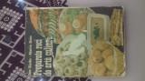 carte de bucate preparate reci de arta culinara 1990 (ion radu si maria onu)