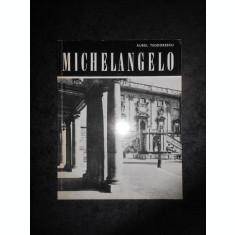 AUREL TEODORESCU - MICHELANGELO