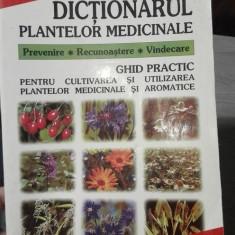 Dictionarul plantelor medicinale – Eugen FIscher