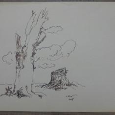Peisaj// desen original Vasile Olac