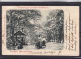 SIGHETU  MARMATIEI   SALUTARI DIN SIGHETUL MARMATIEI   CIRCULATA  1903