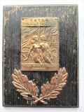 Placheta, Metal pe lemn. Romania 1948 - Cupa Unitatii Tineretului